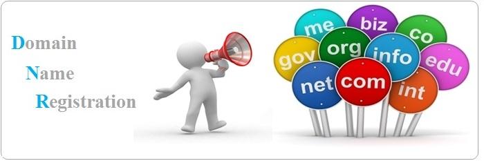 Domain-Name-Registration-Domain-Name-Transfer-Domain-Name-Renewal-Services in Pune India